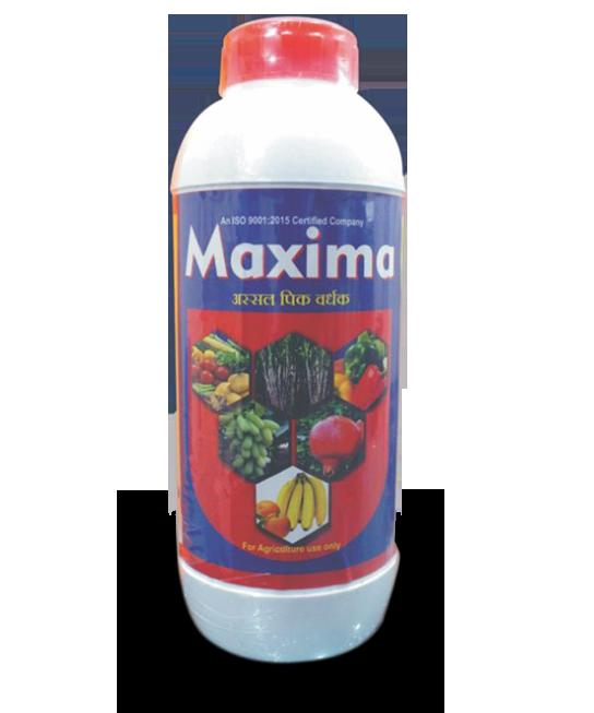 MaximaG